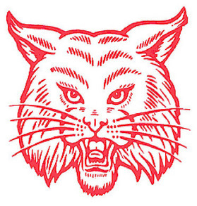 Picture of Bobcat Mascot