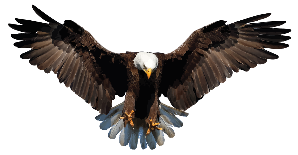 eagle-trace.png